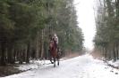 Детские фотосессии с лошадьми_8