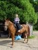 Дети на лошадях 4