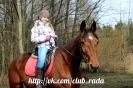 Детские фотосессии с лошадьми 7