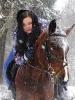 Лошади зимой_5