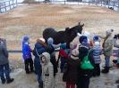 Праздники на лошадях - Масленица_8