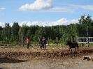 Спортивный конный лагерь_3