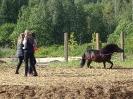 Спортивный конный лагерь_5