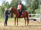Спортивный конный лагерь_9