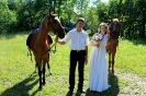 Свадьба на лошадах_12