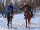 Конные прогулки в Шуваловском парке_10