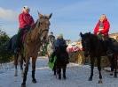 Конные прогулки в Шуваловском парке_16