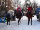Конные прогулки в Шуваловском парке_17