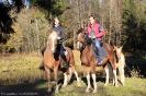 Конные прогулки в Шуваловском парке_1