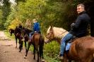 Конные прогулки в Шуваловском парке_23
