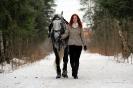 Конные прогулки в Шуваловском парке_24