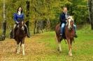 Конные прогулки в Шуваловском парке_6