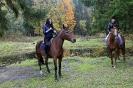 Конные прогулки в Шуваловском парке_7
