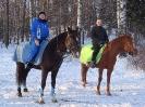 Конные прогулки в Шуваловском парке_9