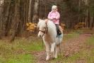 Девочка на белом пони_1